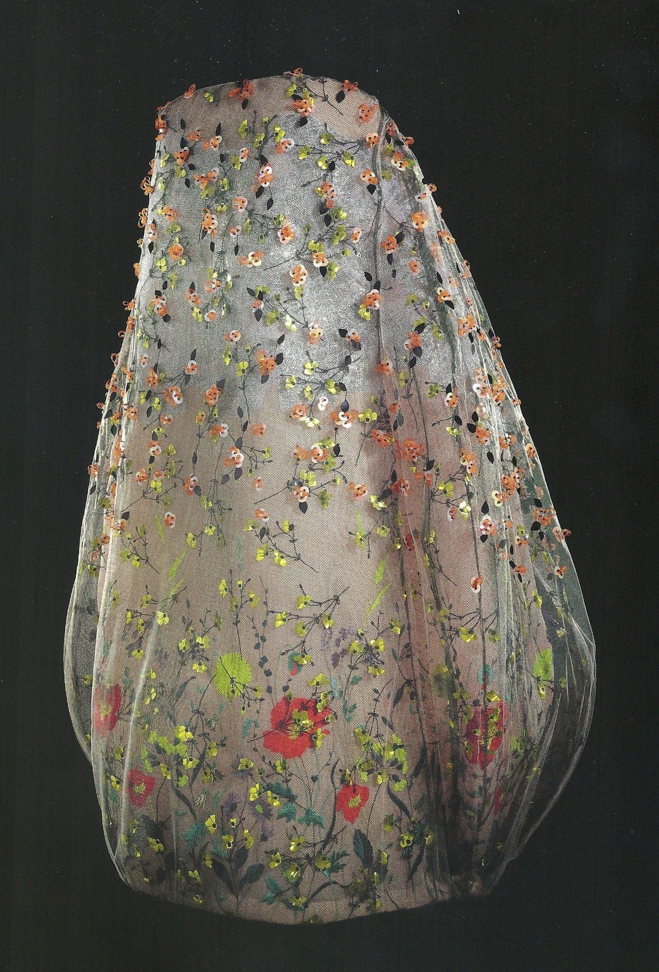 Dior6
