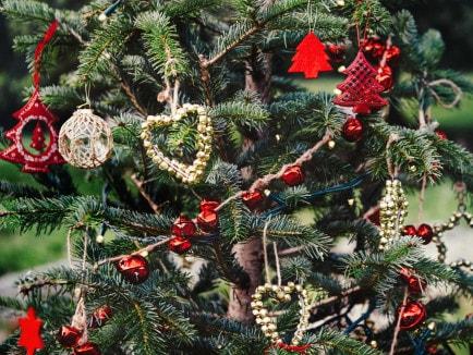 buon natale merry christmas 2014 elena schiavon
